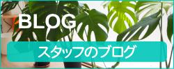 巻き爪ケア ヨネクラ スタッフブログ